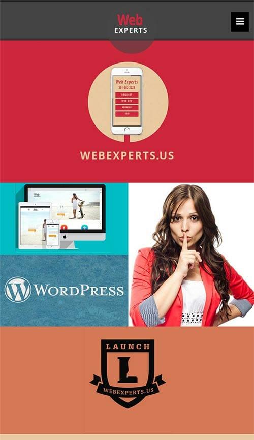 web-mobile-webex2-500